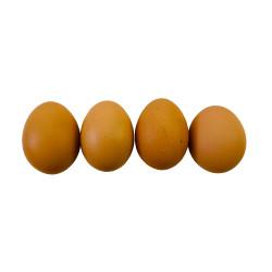 農產品 非基改靈芝藻好蛋(顆)